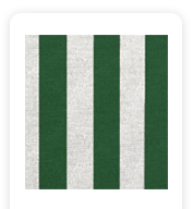 Neoprene Cover – Green Stripes (COSNC-40-STRGreen)